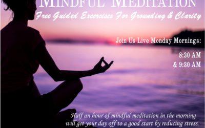 Mindfulness Meditation Sessions